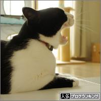 dai20140625_banner.jpg