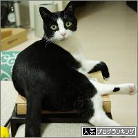 dai20140707_banner.jpg