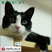 dai20140708_banner.jpg