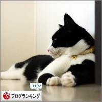 dai20140711_banner.jpg