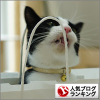 dai20140820_banner.jpg