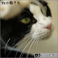 dai20140822_banner.jpg