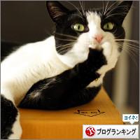 dai20140825_banner.jpg
