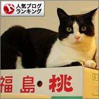 dai20140826_banner.jpg