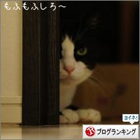 dai20140901_banner.jpg