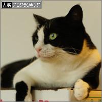 dai20140902_banner.jpg