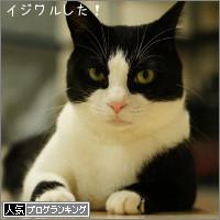dai20140905_banner.jpg