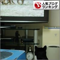 dai20140908_banner.jpg
