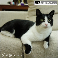 dai20140910_banner.jpg