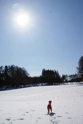 真冬の流浪の民11