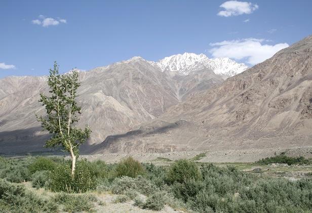 タジキスタン 502