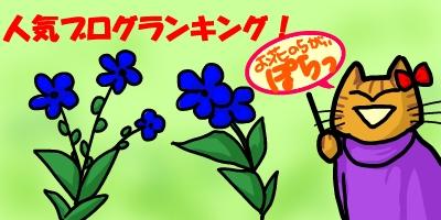 お花のちがい20140905