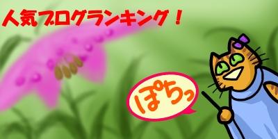 ノモカリス20140916