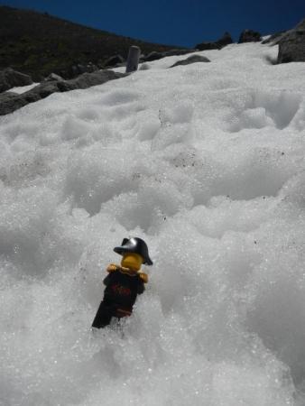 雪に突っ伏すキャプテン