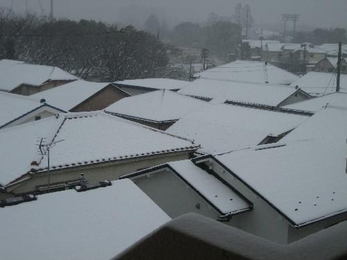 大雪140208-1