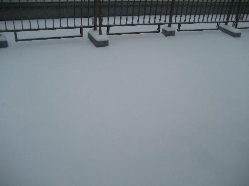 大雪140208-2