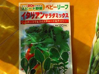 green0323_2014_3.jpg