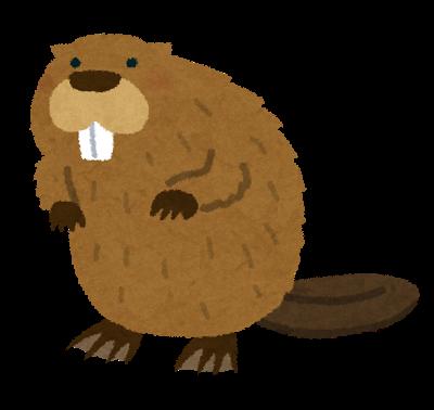 animal_beaver.png
