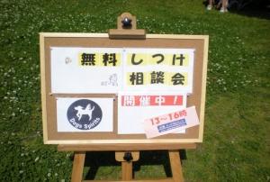 2009_5_11_1.jpg