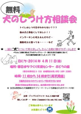 2014_4_11.jpg