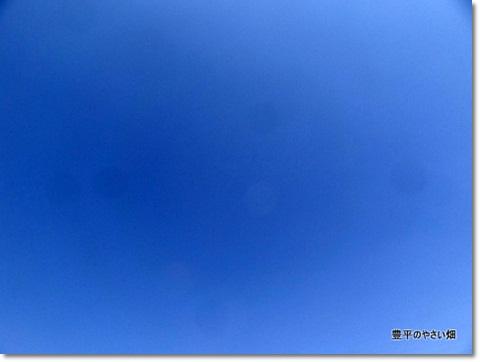 1-DSC03636.jpg