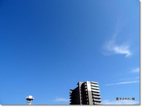 1-DSC06914.jpg