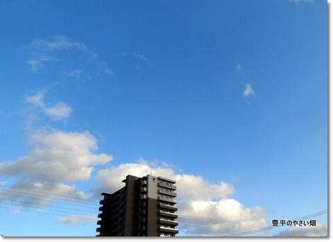 2013-11-41-DSC01048-201403141.jpg