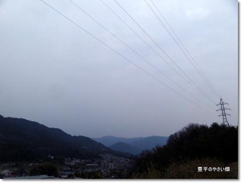 2013-11-41-DSC01483-201403201.jpg