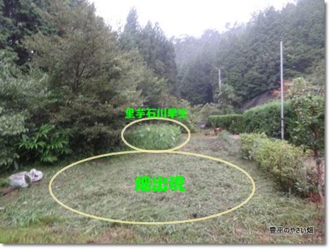 DSC05859-001.jpg
