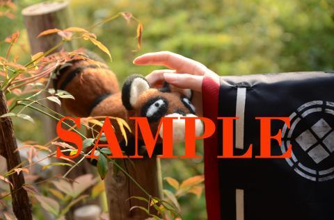 pict-sampleDSC_0202.jpg