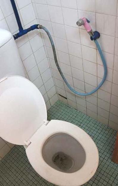20140420 トイレ 14㎝ DSC06484