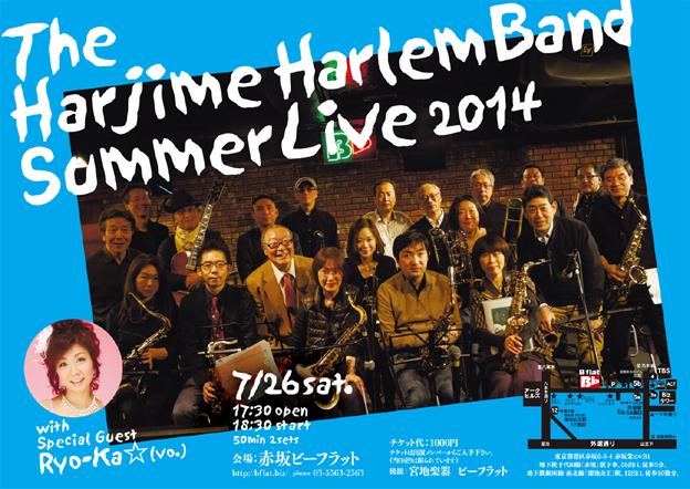 HarlemSummer2014 22㎝