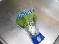 葉わさび酢醤油漬け01