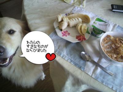 カリヨンはもう朝ごはんを食べたでしょ?