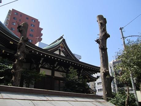 IMG_28942012_easter_kashiwa_easterkashiwa.jpg