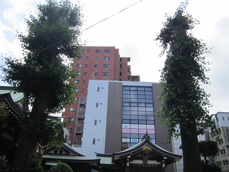 IMG_33862012_easter_kashiwa_easterkashiwa.jpg