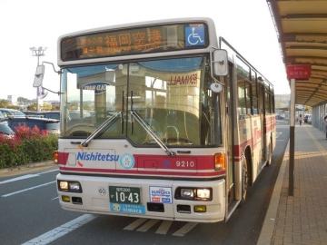 nnr00269k.jpg