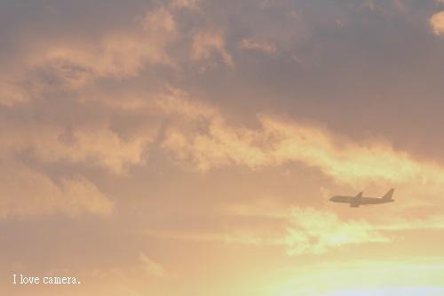 IMG_2014_01_26_9999_474飛行機