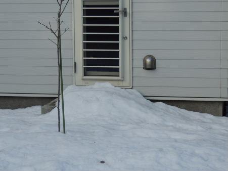 5-雪の後6