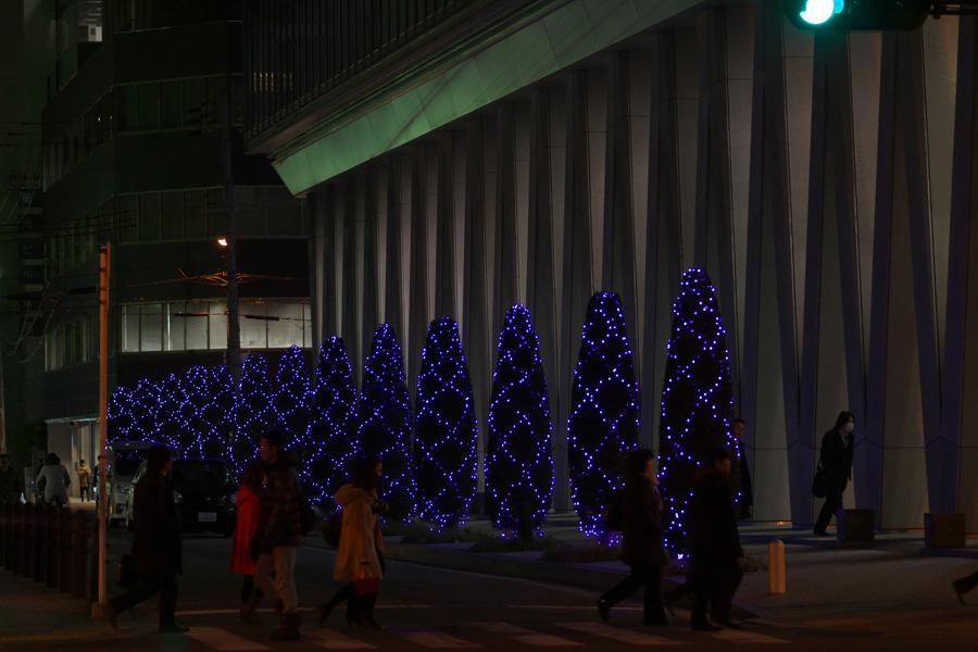 20140221_御堂筋イルミネーション_5