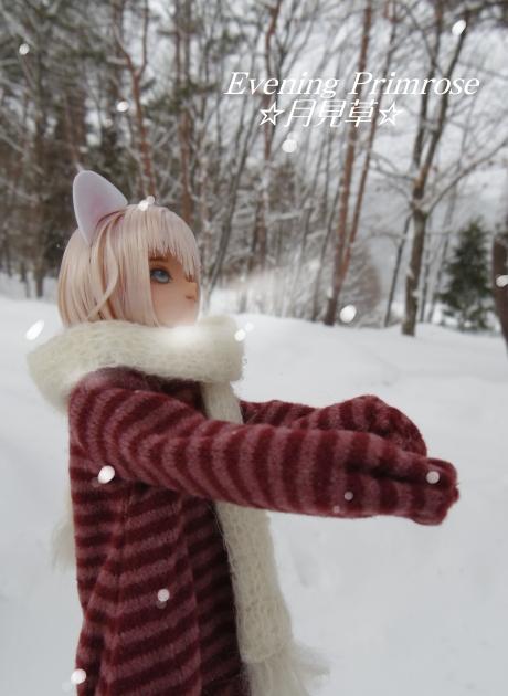 雪の日02