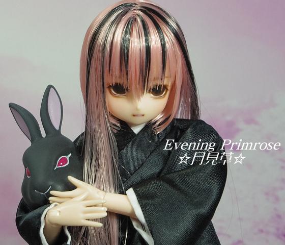 淡墨桜05