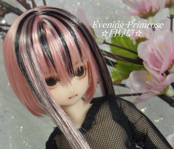 淡墨桜03