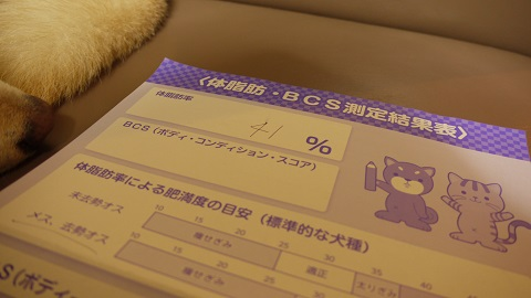 P1190875.jpg