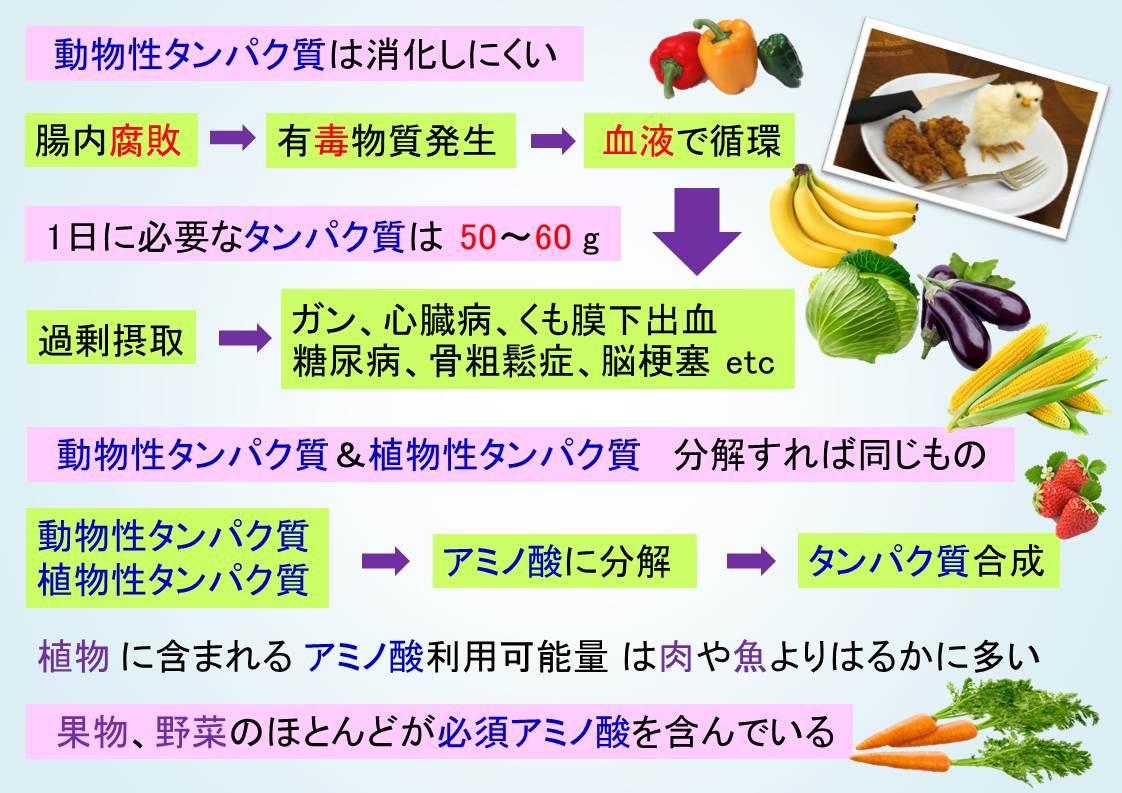 プラ 栄養 - コピー