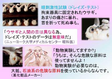 動物実験 ドレイズ (360x254)