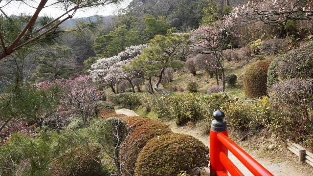 風景自然4枚目 640x360サンプル