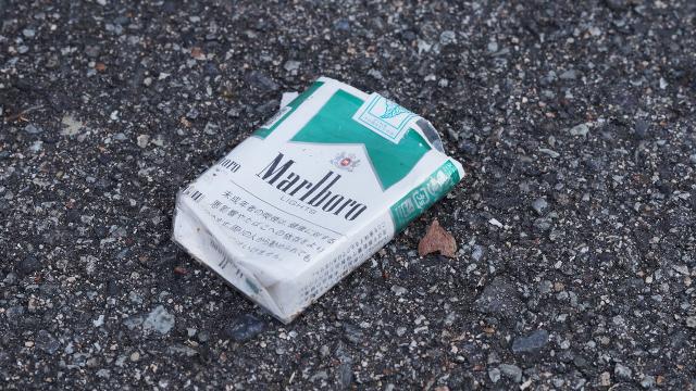 タバコ3枚目 640x360サンプル
