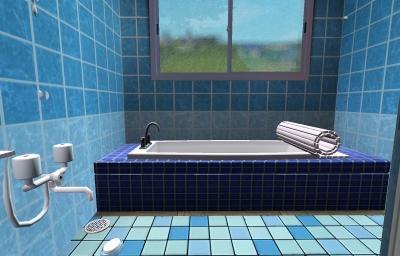 浴室(浴槽側)