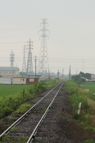 140713-tarumi-09.jpg